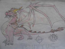 Ignitus (colored) by Spyroconvexity