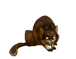 WCC Acornpaw by Lionstrikewhiskers