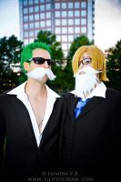 Dressrosa Disguise (2) - AWA 2014 by kiokukaiba