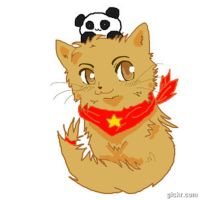 China Cat GIF by HannahMeyers