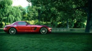 Mercedes SLS AMG Country CG by DistortedImagery