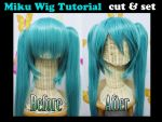 Miku wig tutorial: CUT and SET by valxonia
