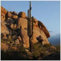 Boulders and Cactus by sametimenxtyr