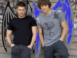 Opposite winged Winchesters by TacoDestroyerAvenger