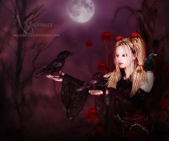 the story of the raven lady by annemaria48