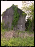 Old Barn 3 by FairieGoodMother