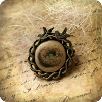 Birds nest brooch by BeautySpotCrafts
