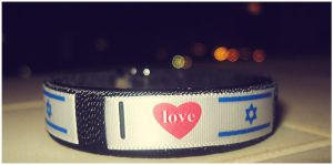 I love Israel by TalGin