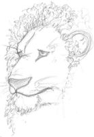lion sketch by xarnh