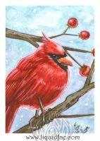 Cardinal ACEO by LiquidFaeStudios