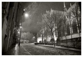 Snow at night by flemmens