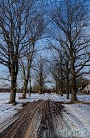 Road to Home. by SCHTARKs-FOTO