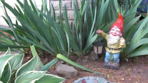 Garden Gnome Stock by RX-stock