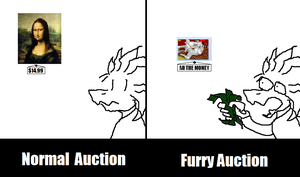 Normal Vs. Furry by Jreeds
