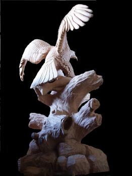 Eagle with salmon in progress 14 by woodcarve