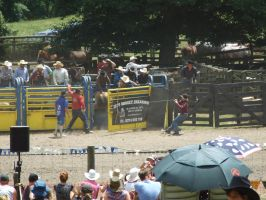 Rodeo82 by Jean3071