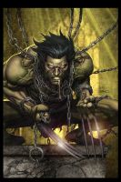 Wolverine by Rusty001