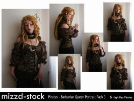 Pirates - Barbarian Queen Portrait Pack 3 by mizzd-stock