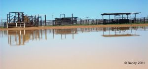 Cattle Yards Reflections 1 by Iluvbiscuit2
