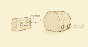 Hay, Bale by randyotter