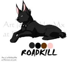 Roadkill referance sheet REDO by xAshleyMx