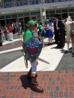 Another Link:: Anime Expo by CapcomQueen