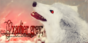 Xavier Grey by sillymil