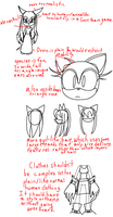 Sonic Character Study(?) by goldtaills