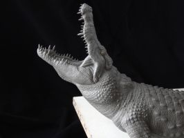 Nile Crocodile sculpt- head close-up by revenant-99