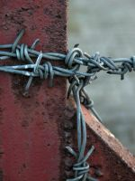 barbed wire by klebsky