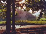 Odenwald Autumn Quiet Place by engineerJR