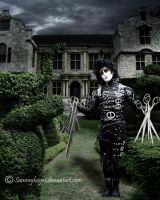 Edward Scissorhands by sammykaye1