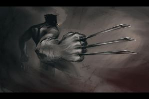 Wolverine Final by TheMinttu