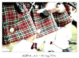 Alba 10 - Marching Tartan 1 by 51ststate