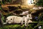 mother wolf and her cub by premierluis