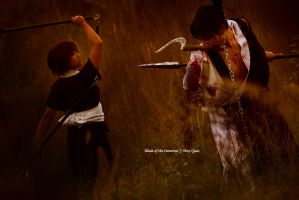 Blade of the Immortal - Versus by ImMuze