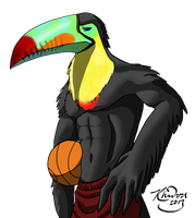 Basketball Toucan by Toledo-the-Horse