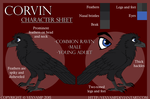 Character Sheet -Corvin- by VexVamp