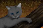 Cinderpelt .Its getting autumn. by Freaky--Like--Vivi