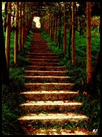 Stairs to... by maz0o