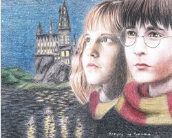 Harry and Hermione by Mitsuukii