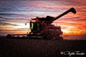 Harvest Sunset 11 by cthacker