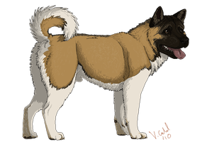 Perfect Akita for my sis by PrinzeBurnzo
