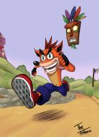 Crash Bandicoot by TheFresco