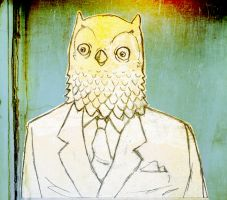 Mr Owl by mapocho