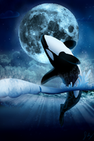 Orca Night by Silvergravity