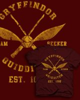 Gryffindor Quidditch by spacemonkeydr