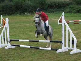 11hh Pony Jumping 50cm by StarCrossedPsycho