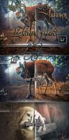 25 Professional Autumn Lightroom by koko26