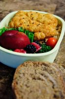 Fish and Bread Bento by Demi-Plum